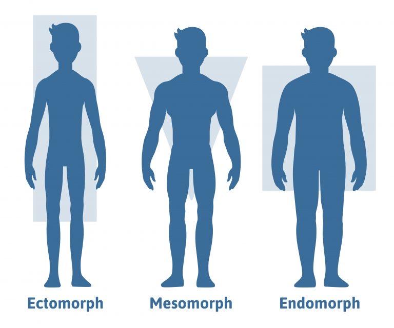 Vücut Tipleri ve Özellikleri (Somatotip)