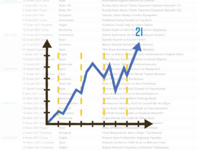 Birinci Yıl Raporu – 21 BLOG İçin Bir Yıl Nasıl Geçti?