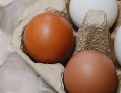 Yumurtanın Faydaları ve Spor Yapanlar İçin Önemi Nedir?